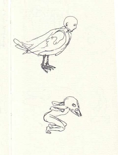 bird human